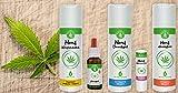 Hanfkosmetik naturkosmetik, 100% natur - Hanfshampoo, Hanfduschgel, Hanfkörpermilch,...