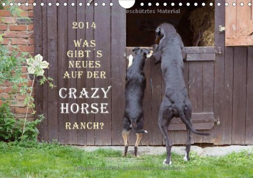 2014 Was gibt´s Neues auf der Crazy Horse Ranch? (Wandkalender 2014 DIN A4 quer): Ausgelassene Pferde auf der Crazy Horse Ranch (Monatskalender, 14 Seiten) Crazy Horse Ranch