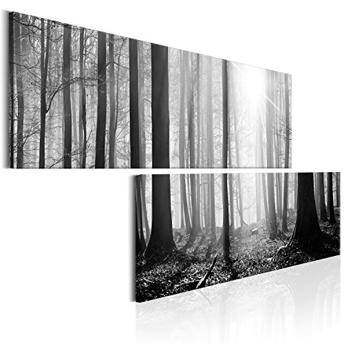 murando - Bilder Wald 180x90 cm Vlies Leinwandbild 2 Teilig Kunstdruck modern Wandbilder XXL Wanddekoration Design Wand Bild - Waldlandschaft Natur Panorama Baum schwarz grau weiß c-B-0235-b-r