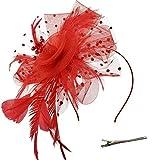 DRESHOW Fascinators Hut Blume Mesh Bänder Federn auf einem Stirnband und einem geteilten Clip Cocktail Tea Party Headwear für Mädchen und Frauen