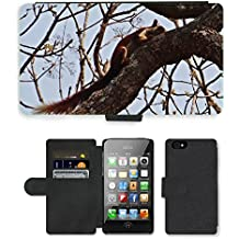 Grand Phone Cases PU Flip Carcasa Funda de Cuero Piel Cubre Case // M00140787 Malabar scoiattolo gigante Ratufa // Apple iPhone 4 4S 4G