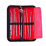 Premium-Silber-Edelstahl-Zahnhygiene Kit Werkzeuge 9pcs ---- Zahnpinzette, Zungenreiniger, Antibeschlagspiegel, sichel Zahnsteinentferner, dentaler Sägezahn, Tartar-Entferner, Zahnsonde, spitze Nadel, hammer förmige Nadel mit Ledertasche