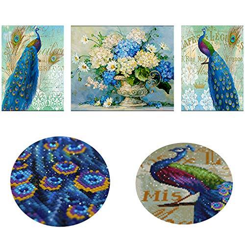 3 Panels Diamant Maler-Kits für Erwachsene, kompletter Bohrer, 5D DIY Malen nach Zahlen Kits mit Diamanten für Zuhause Wanddekoration - Happy Peacock 16X51'' (40X130 CM) Happy Peacock -