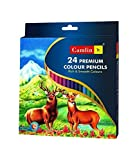#2: Camlin Kokuyo Premium Full Size Colour Pencil - 24 Shades