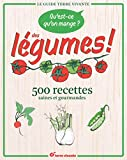 Qu'est-ce qu'on mange ? Des légumes ! 500 recettes saines et gourmandes