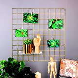 "Rumcent Metal Mesh Wall Grid Panel,Metal Decor Wall Shelves,Room Decoration,Photo/Art Display&Organizer-Gold (23.6""L x 23.6""W)"