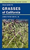 California Field - Best Reviews Guide