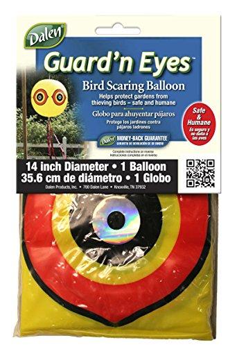gardeneer-by-dalen-guardn-eyes-bird-scaring-scarecrow-balloon