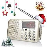 Best Las radios portátiles - Radioddity RF23 Portatile AM/FM Transistor Radio MP3 Music Review