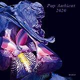 Pop Ambient 2020