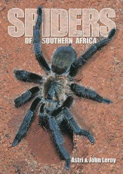 Spiders of Southern Africa von [Leroy, Astri]