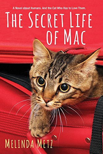 Como Descargar Torrente The Secret Life of Mac PDF Gratis Descarga