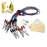 Sorliva Batterie-Lichtdioden-Set, Orange Kartoffel, Zitrone, Akku, Physik, Lehren, Experiment