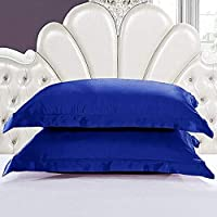 Blue Horse 5 Star Pillow with 100% Cotton Plain Pillow Cover - Standard Size (17x27'Inch, Navy Blue) Pack of 2