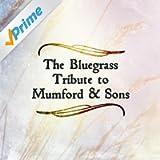 Bluegrass Tribute to Mumford & Sons
