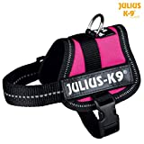Trixie Julius-K9 Powergeschirr Baby 2/Mini-Mini/Mini Hundegeschirre Geschirre (M (51-67cm/28mm), Fuchsia)