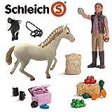 Schleich Pferdeset mit englischem Vollblut, Pferdepflegerin und viel Zubehör