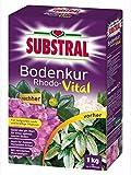 Bodenkur Rhodo-Vital Substral 1kg