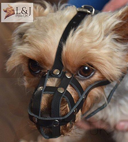 Licht Leder Hund Maulkorb für Chihuahua Yorkshire Terrier Mini Krug und andere - Yorkshire 3 Licht