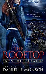 The Rooftop: A Story of Fallon and Reign (Entwined Realms Book 4) (English Edition)