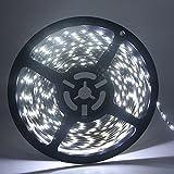Grandview (weiß 16.4ft/5M LED Strip-Light flexibel 3528300SMD Wasserdicht Licht Streifen für Auto Stage Party Weihnachten Garten Schrank Heimwerker Haushalt Dekoration £ ¨ dc-24V)