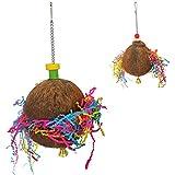 XDYFF Nido per Pappagalli Criceto in Guscio di Cocco Naturale Brushed Coconut Giocattolo di morso in Legno Spazzolato con gusci di Noce di Cocco per Uccelli in Legno