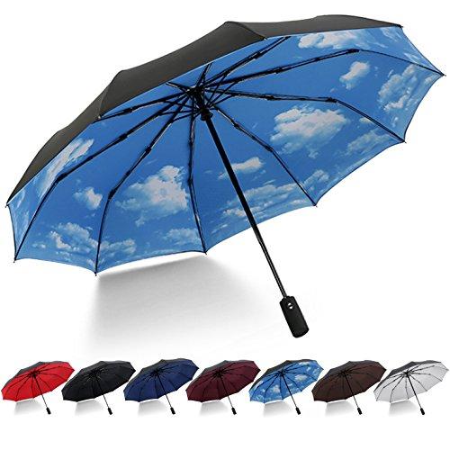 HeHe Ombrello Pieghevole Antivento - Ombrello da viaggio di alta qualità e resistenza - 10 stecche rinforzate, funzione anti-vento - 210T panno di doppio ombrello Tessuto per Uomo e Donna