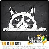 KIWISTAR mürrische Katze 18 x 10 cm IN 15 FARBEN - Neon + Chrom! Sticker Aufkleber