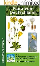Flora von Deutschland (iFlora-Pflanzenführer 9)