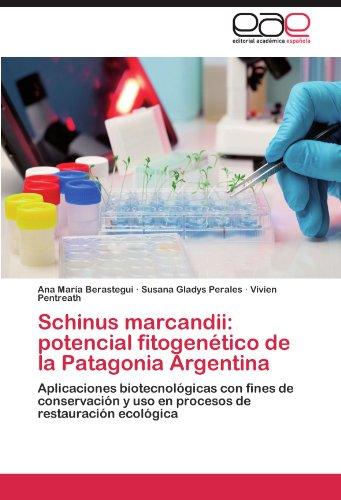 Schinus Marcandii: Potencial Fitogenetico de La Patagonia Argentina
