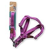 Tauchen Tuch Reflektierende Traktion Seil, solide tragen, reflektierende Traktion Brustgurt, bequemen Hals, mittlere und große Hund Heimtierbedarf. (Farbe : Purple, größe : M)