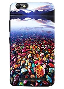Omnam Beautiful Sea Shells On The Side Of River Printed Designer Back Cover Case For Lenovo Vibe C (A2020)