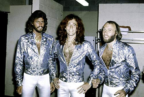 The Bee Gees Photo Print (76,20 x 60,96 cm)