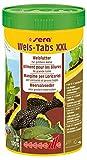 sera Wels-Tabs XXL 250 ml das Futter für größere Welse: Als Boden- oder Hafttablette nutzbar