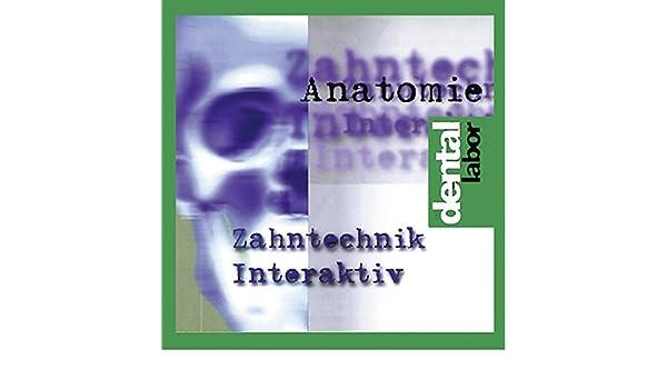 Zahntechnik interaktiv, Anatomie, 1 CD-ROM Für Windows 95: Werner ...