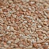 Terralith Marmor-Steinteppich 2-4 mm Rosa Corallo für 1qm incl. Bindemittel