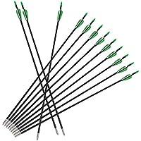 Zerone 12 pcs Flecha de Fibra de Vidrio, 8mm Flecha de Acero Inoxidable Accesorios de Tiro con Arco (32 Pulgadas)
