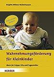 Wahrnehmungsförderung für Kleinkinder: Ideen für Krippe, Kita und Tagesmütter