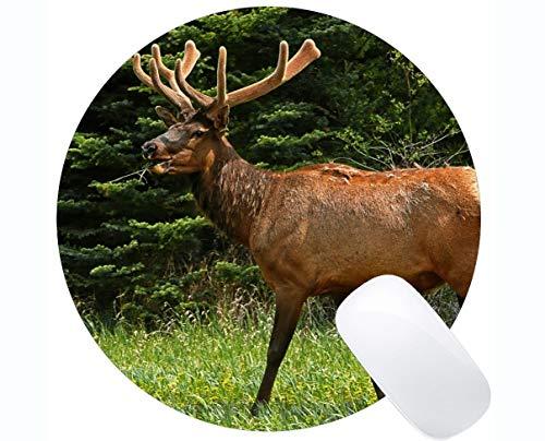 Rutschfeste runde Mausunterlage für Desktops, Hirsche, Wildtiere - genähte Kanten
