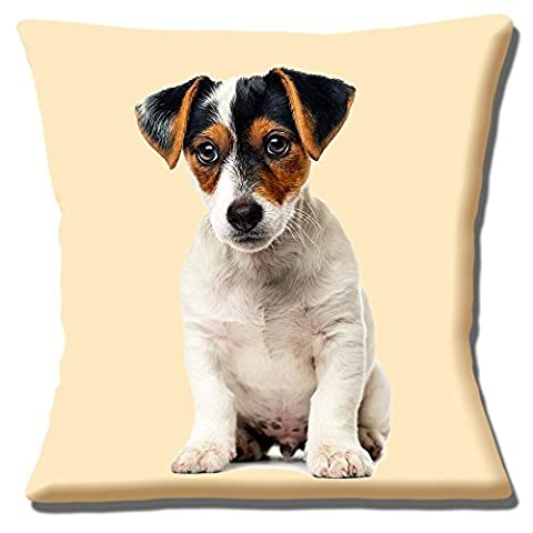 Cute Jack Russell Puppy Dog Tan Black White Smooth Hair