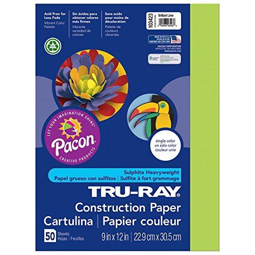Pacon Papier Const, 22,9 x 30,5 cm, Brilntle