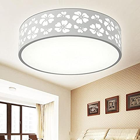 NHD-Modern minimalist LED ceiling lamp round wrought iron snowflake ceiling bedroom lights remote control dimmer