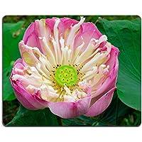 Luxlady Gaming Mousepad immagine ID: 26756517Nizza loto rosa Blossom - Nizza Mouse Pad