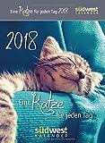 : Eine Katze für jeden Tag 2018 ABK