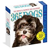 365 Dogs Colour Page-A-Day Calendar 2020
