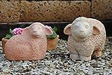 Kunert-Keramik Schafe,2er Set,liegend + stehend,handgefertige Terracotta,37cm,frostfest