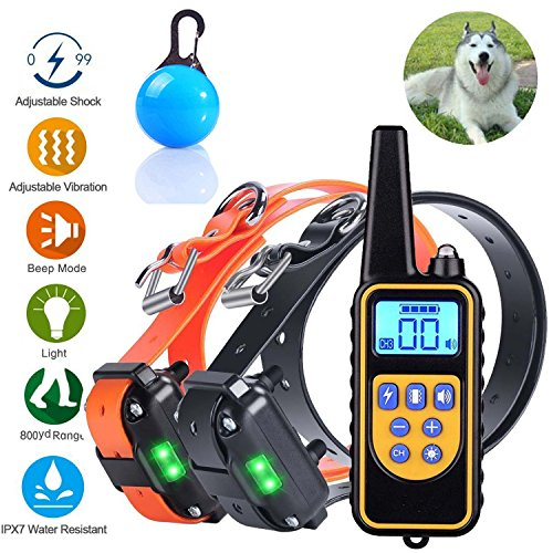 Mincheda remoto 1000ft Dog Training Collare Rechargetable e 100%...