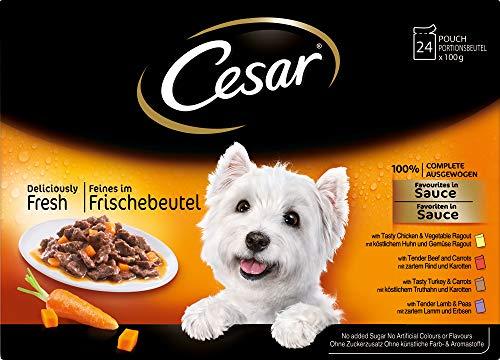 Cesar Hundefutter Feines im Frischebeutel, 2 er Pack (2 x 24 Frischebeutel x 100g) - 2