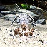 21sandwhick Schneckenfalle, Transparente Kunststoff-Schneckenfalle Lockt Catcher Aquarium Pflanzenschutz SNone
