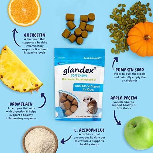 51Eon6KOq4L - Glandex 30 Count Soft Chews Suplemento de probióticos y Fibra para Perros
